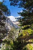 picture of samaria  - Mountain adventure thru the Samaria gorge passageway - JPG