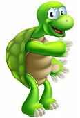 pic of terrapin turtle  - An illustration of a cute cartoon tortoise or turtle character pointing at something - JPG