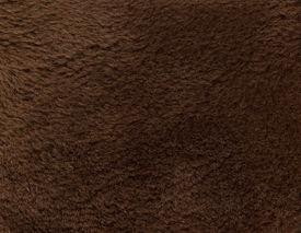 stock photo of budge  - Fur texture - JPG