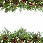 stock photo of greenery  - Christmas floral background border with mistletoe - JPG