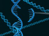 image of modification  - Microscopic view of DNA modification  - JPG
