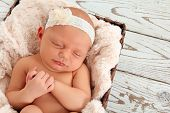 image of headband  - Newborn baby asleep on a purple blanket - JPG