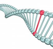 stock photo of double helix  - An illustration of a DNA double helix with one highlighted in red - JPG