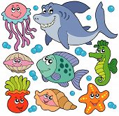 Aquatic Animals Collection poster