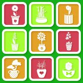 Set Of 9 Icons Of Different Plants And Flowers Growing In Pots. Eps10