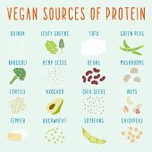 stock photo of quinoa  - Vegan sources of protein - JPG