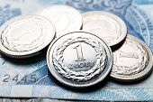 pic of lien  - close up of Polish zloty coins, currency