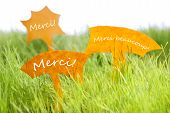 pic of thankful  - Three Labels With French Text Merci And Merci Beaucoup Which Means Thank You And Thank You Very Much On Sunny Green Grass For Spring Or Summer Feeling - JPG