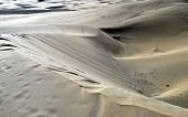 picture of canary  - Dunes of Maspalomas - JPG