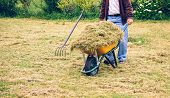 stock photo of wheelbarrow  - Closeup of senior man carrying wheelbarrow with dry hay on a field - JPG