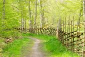 stock photo of wooden fence  - Traditional wooden fence made of spruce and juniper - JPG