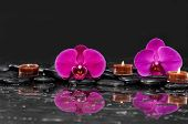 pic of stone-therapy  - Red two orchid with candle and therapy stones  - JPG