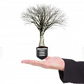 stock photo of light fixture  - Businessman holding hand out in presentation against empty light bulb - JPG