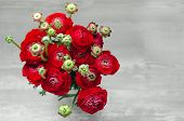 pic of buttercup  - Colorful romantic bouquet of flowers ranunculus buttercup macro spring on card - JPG