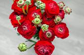 stock photo of buttercup  - Colorful romantic bouquet of flowers ranunculus buttercup macro spring on card - JPG