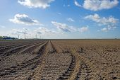 image of plowed field  - Plowed field with furrows in spring under a blue cloudy sky