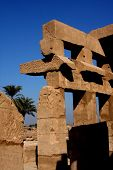 stock photo of skarabaeus  - ancient karnak temple in luxor in egypt - JPG