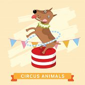 Постер, плакат: Circus Dog vector animal series