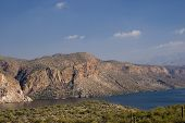pic of snowbird  - canyon lake tonto national forest - JPG