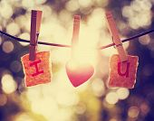 INTENTIONAL sun flare during sunset behind i heart u pinned to a grape vine with clothes pins in nat poster