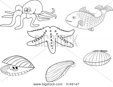 Picture or Photo of Vector illustration of assorted sea creatures outline