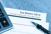pic of self assessment  - Cool toned image of UK income tax return form for 2012 - JPG