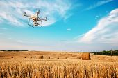 drone quad copter on yellow field poster