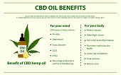 Cbd Oil Benefits Horizontal Infographic, Healthcare And Medical Illustration About Cannabis poster