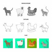 Isolated Object Of Breeding And Kitchen Logo. Collection Of Breeding And Organic Vector Icon For Sto poster