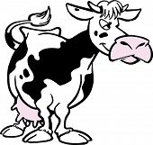 picture of dessin  - Vector funny cartoon cow standing and chewing - JPG