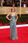 LOS ANGELES - JAN 27:  Julia Stiles arrives at the 2013 Screen Actor's Guild Awards at the Shrine Au