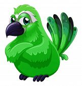 picture of angry bird  - Illustration of a scary green bird on a white background - JPG