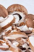 foto of agaricus  - Diced and whole agaricus brown button mushrooms also known as portobello as they increase in size ready to be used as a savory cooking ingredient or in vegetarian and vegan cuisine - JPG