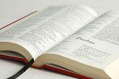Постер, плакат: Открытый Библии сосредоточена на слова псалмов