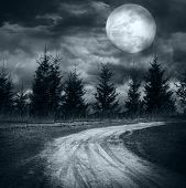 picture of mystery  - Magic landscape with empty rural road going to pine tree mysterious forest under dramatic cloudy sky at full moon night - JPG