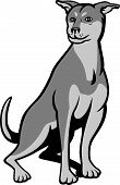 picture of cross-breeding  - Illustration of a Siberian Husky Chinese Shar Pei cross breed dog sitting on white background done in cartoon style - JPG