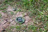 stock photo of landmines  - land - JPG