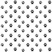 stock photo of paw-print  - Print black paws on a white background - JPG