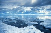 foto of arctic landscape  - Winter coastal landscape with floating ice fragments on still cold blue water - JPG