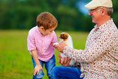 picture of grandpa  - grandpa and grandson playing with little puppy summer outdoors - JPG