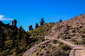 image of volcanic  - Volcanic Rock Basaltic Formation in Gran Canaria Canary Islands - JPG