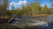 picture of siberia  - Sunny May in the forest on the banks of the river Askiz in the foothills of the Kuznetsk Alatau - JPG