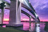 pic of leo  - The Gateway Bridge  - JPG