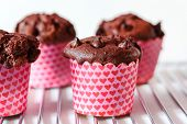 pic of chocolate muffin  - chocolate muffins - JPG