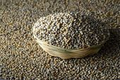 foto of millet  - Bajra (Pearl millet) in wooden(bamboo) basket. Close up.