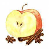 picture of cinnamon sticks  - Half of red apple - JPG