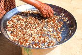 stock photo of ant  - old woman select red ant and egg thai food cooking fried red ant and egg - JPG