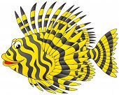 picture of devilfish  - Vector clip - JPG