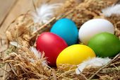 Concept Of An Escaped From Egg Of Young Chicken.colourful Easter Eggs In The Nest. On Wooden Rustic poster