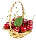 Cherries in a basket isolated on white background.